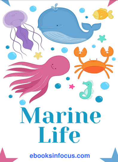ebook cover for marine life colouring book